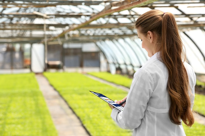 Woman inspecting Greenhouse